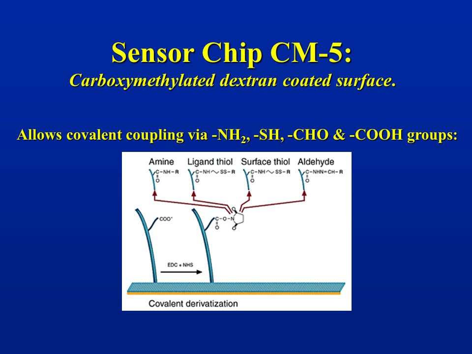 Sensor Chip CM-5: Carboxymethylated dextran coated surface.