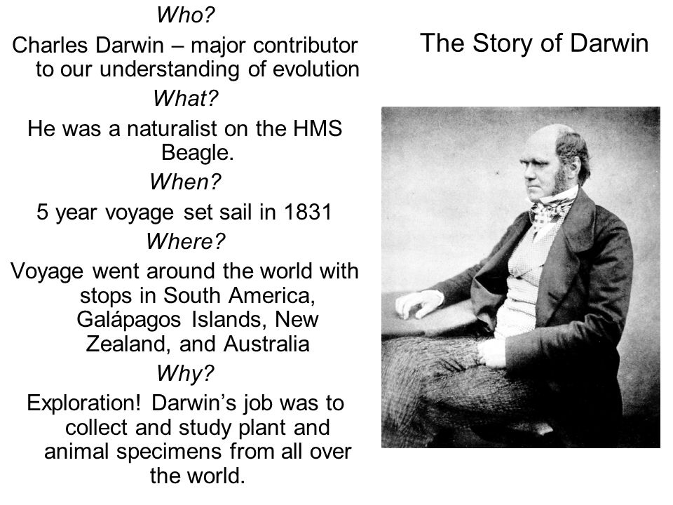 darwin s theory of evolution ppt  the story of darwin who charles darwin major contributor to our understanding of evolution