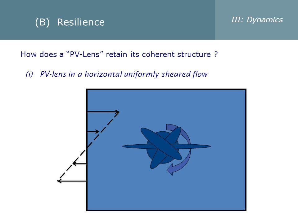 (B) Resilience III: Dynamics