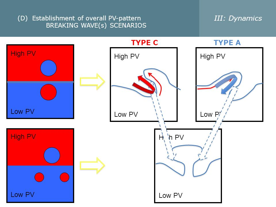 (D) Establishment of overall PV-pattern