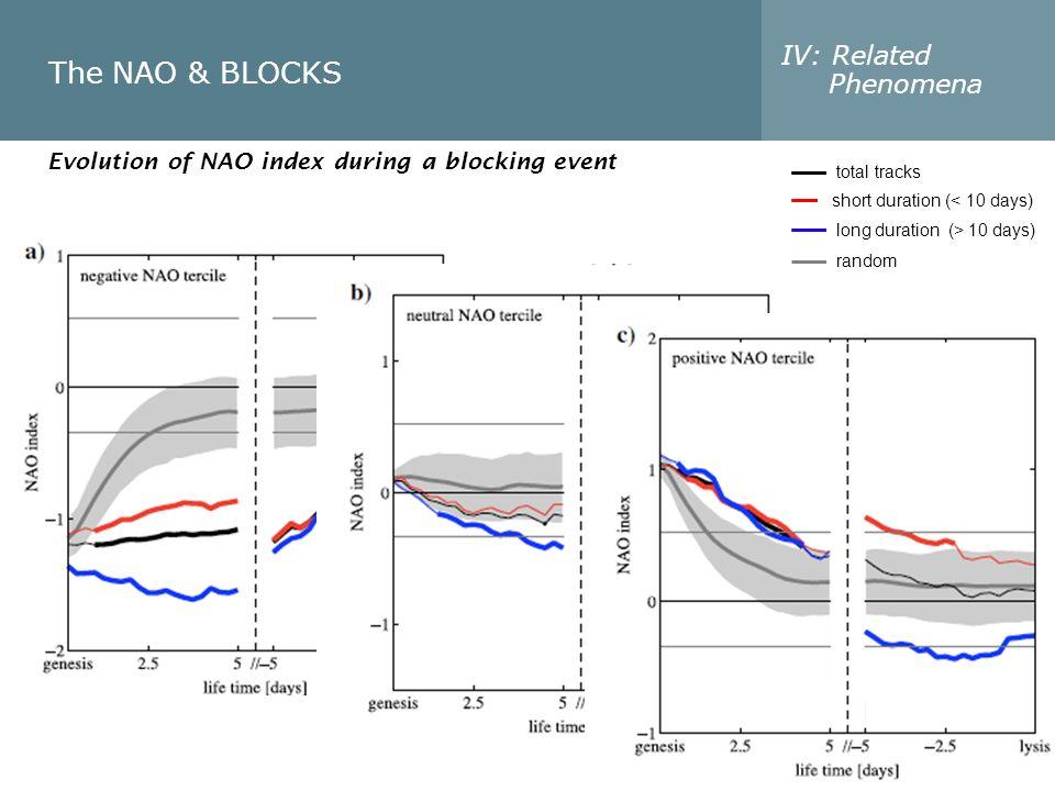 The NAO & BLOCKS IV: Related Phenomena