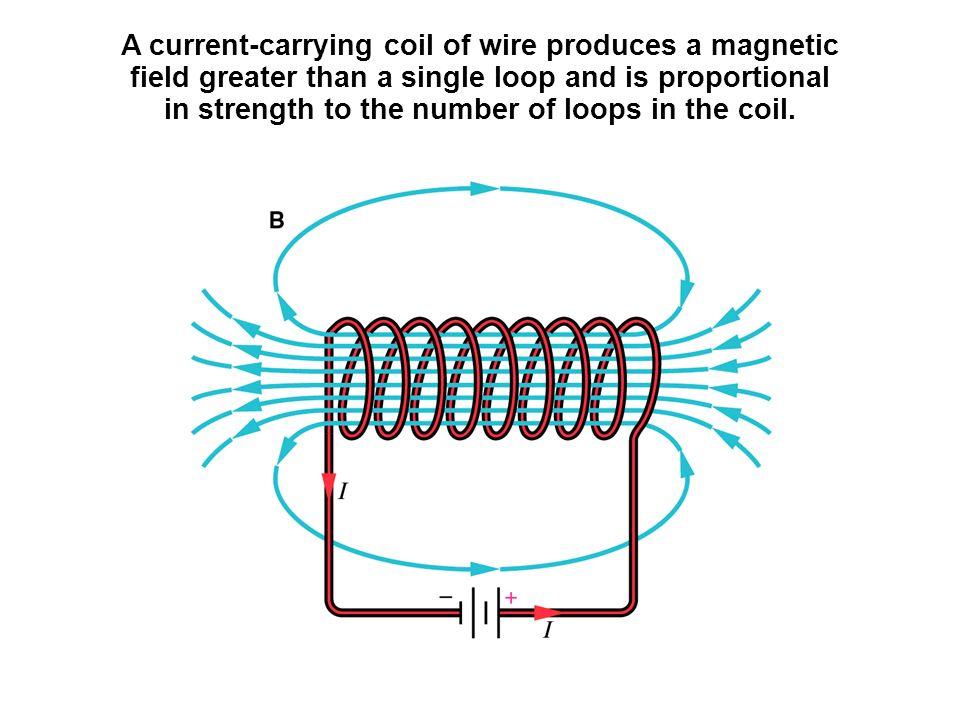 Single Loop Wire : Reading quiz false true ppt video online download