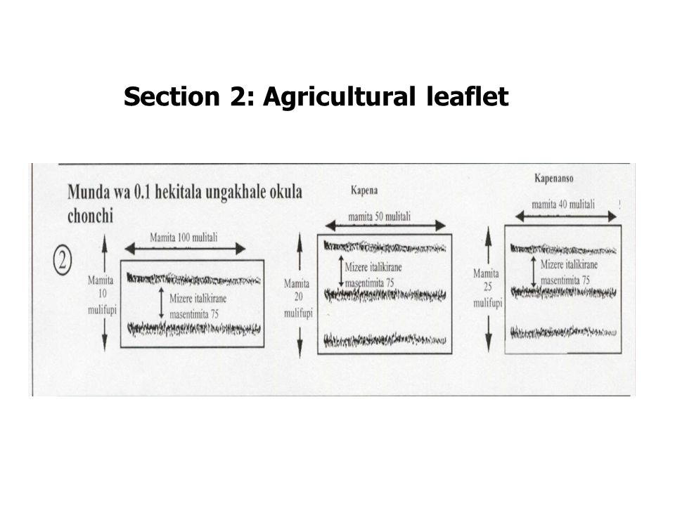 Section 2: Agricultural leaflet
