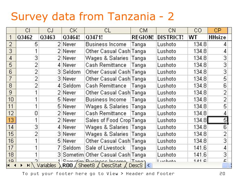 Survey data from Tanzania - 2
