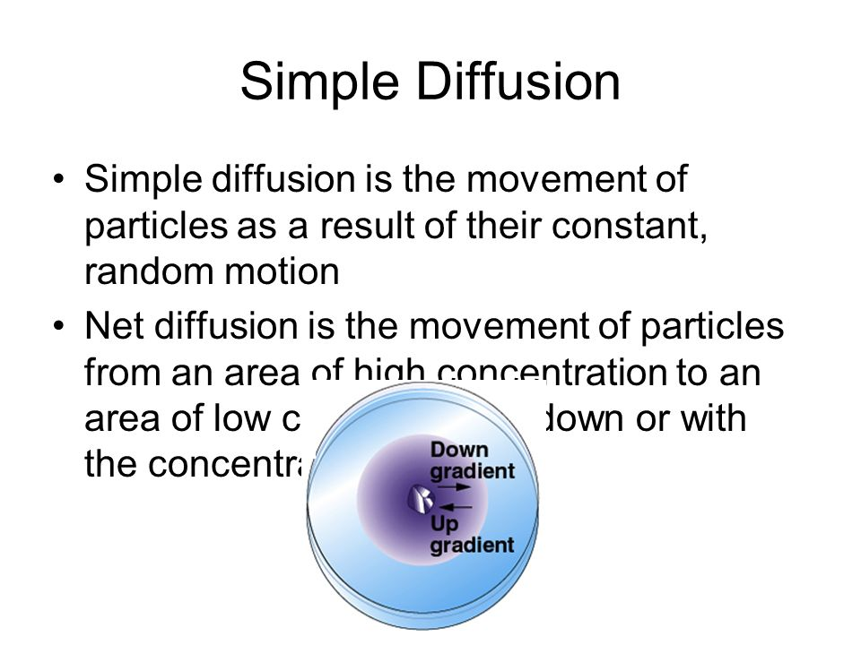 a description of the diffusion the random movement of particles When molecules are moving but also constantly changing direction, diffusion occurs because of the statistics of this movement the image below shows a volume there, he considered the related phenomenon of brownian motion, ie , the random motion of suspended particles like pollen grains the pdes used to model.