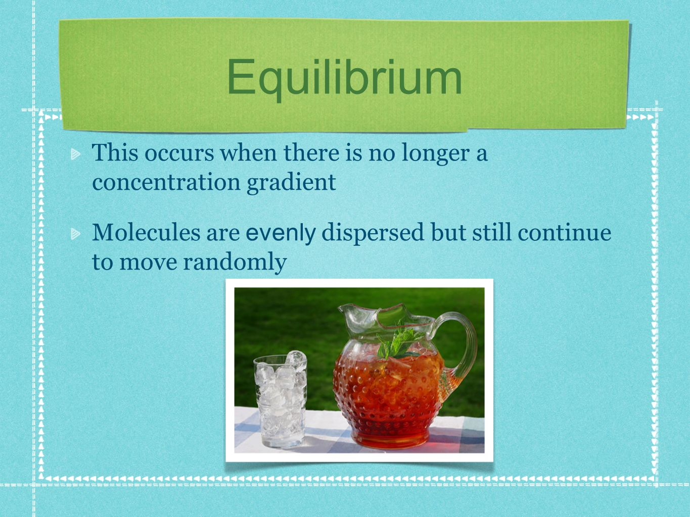 Equilibrium This occurs when there is no longer a concentration gradient.