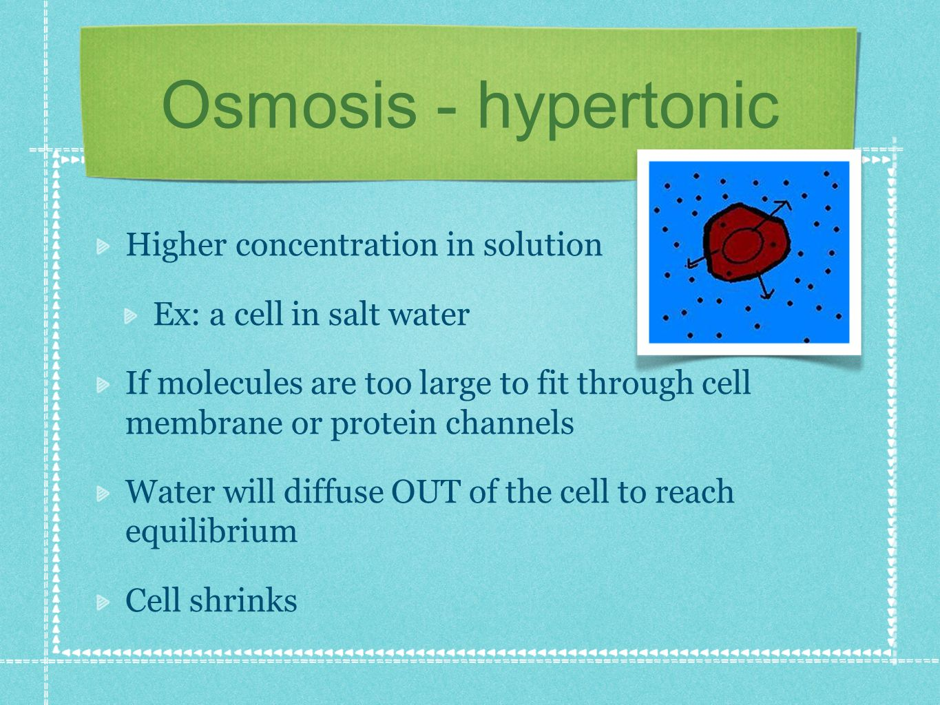 Osmosis - hypertonic Higher concentration in solution