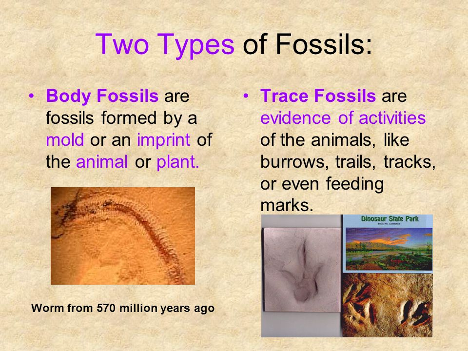 3 types of fossil dating