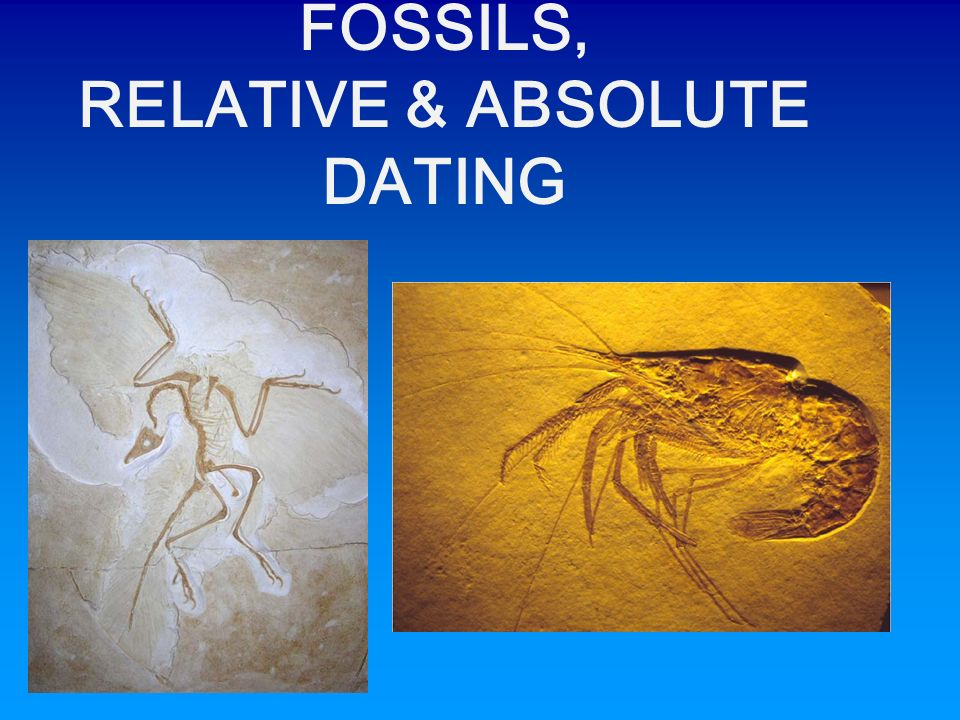 relative and absolute dating fossils They use absolute dating methods,  this is different to relative dating,  radiometric dating most absolute dates for rocks are obtained with radiometric methods.