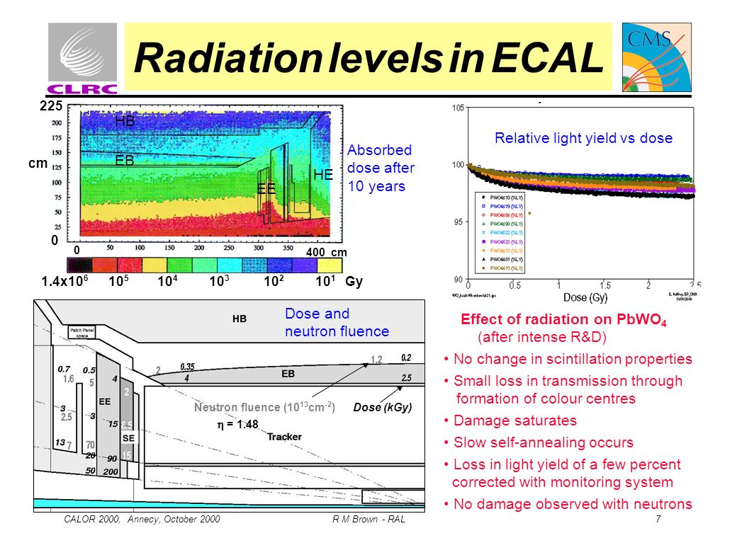 Radiation levels in ECAL