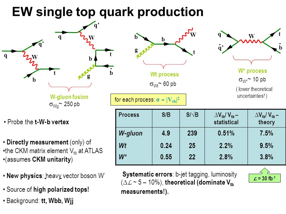 EW single top quark production