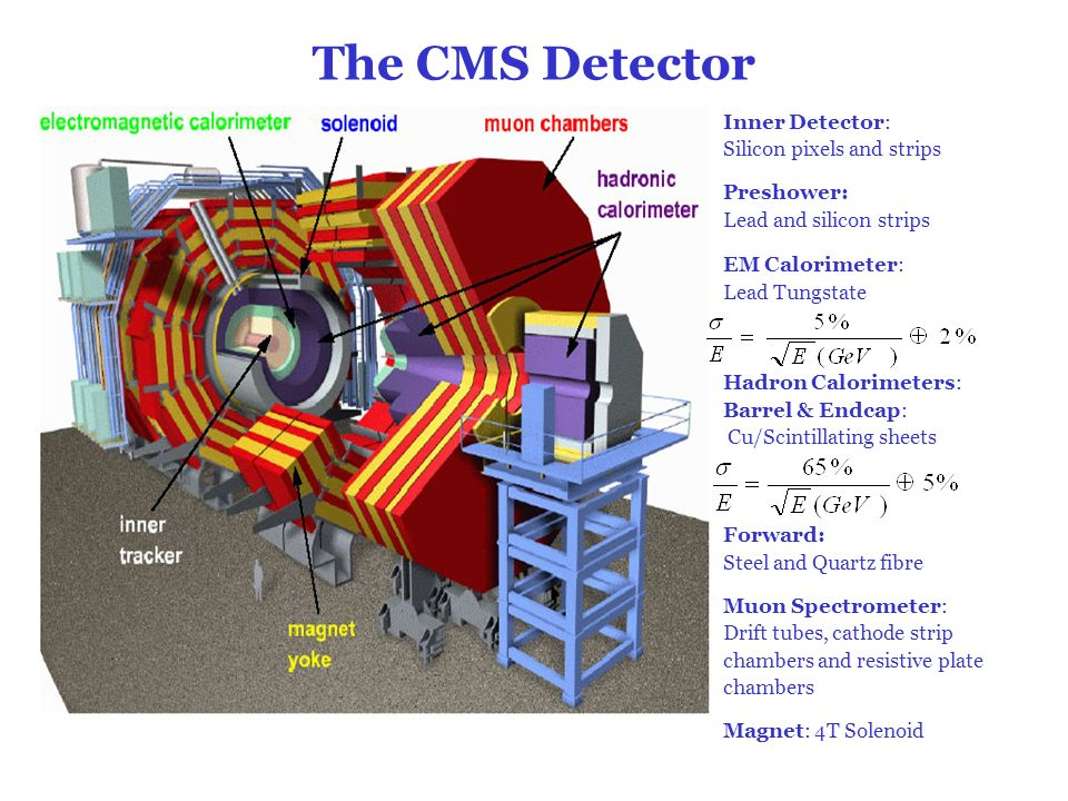 The CMS Detector Inner Detector: Silicon pixels and strips Preshower: