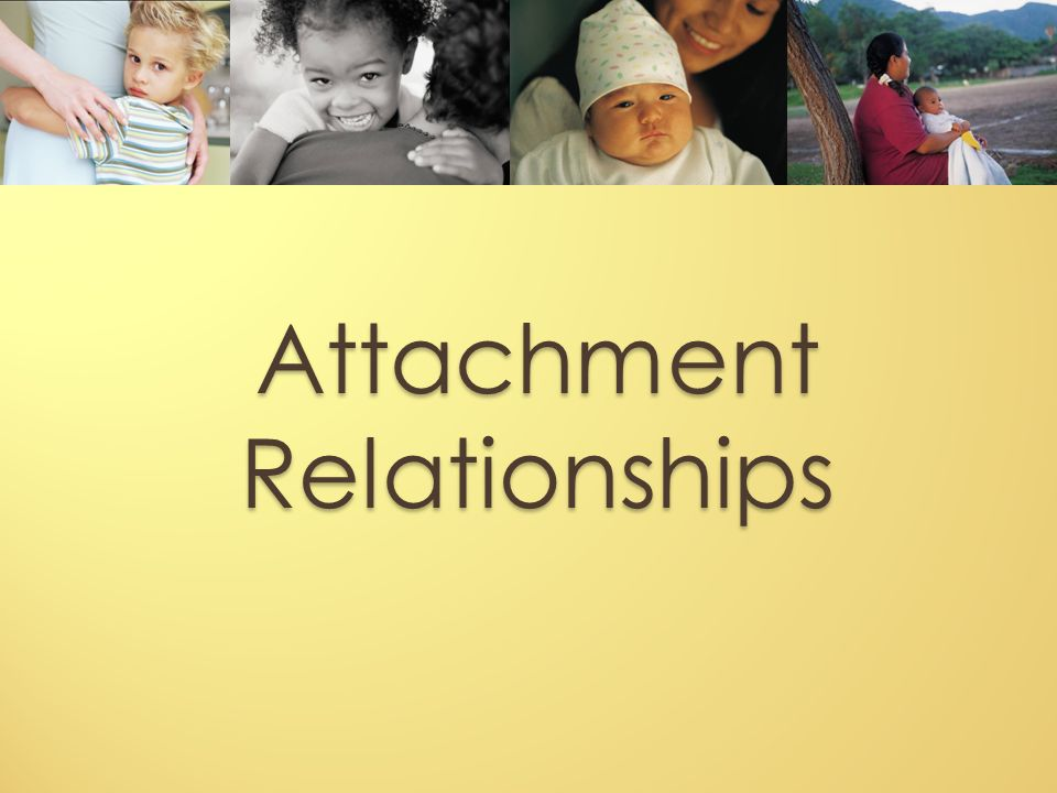 the development of attachment essay