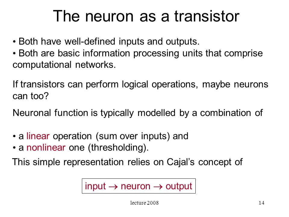 The neuron as a transistor