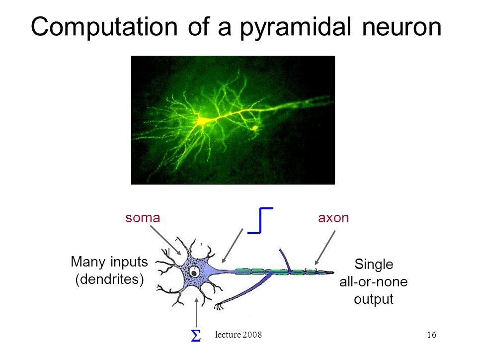 Computation of a pyramidal neuron