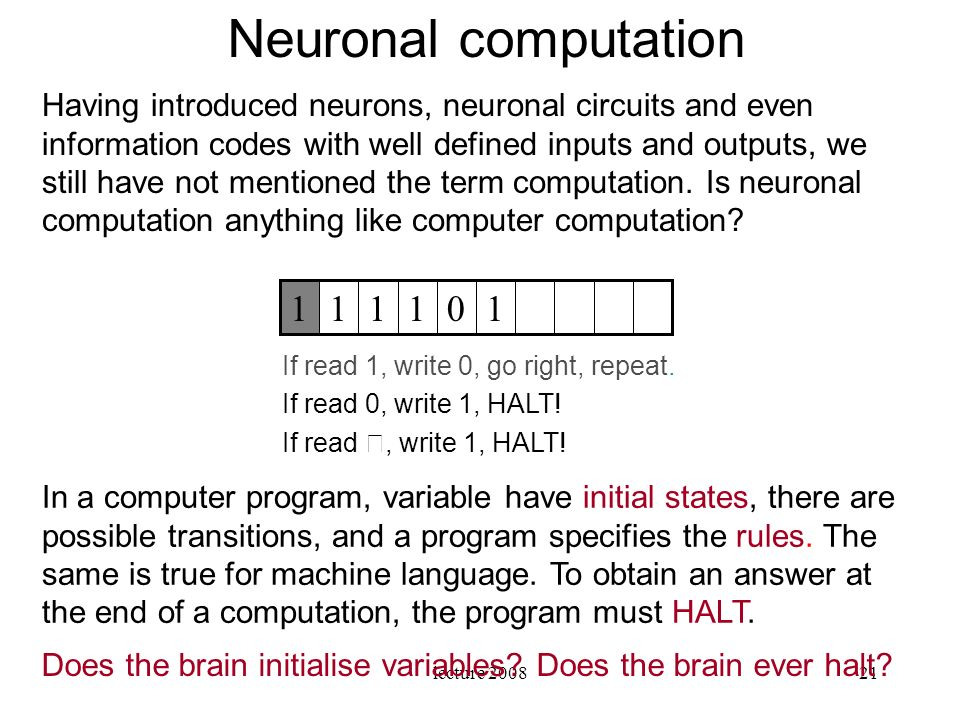 Neuronal computation