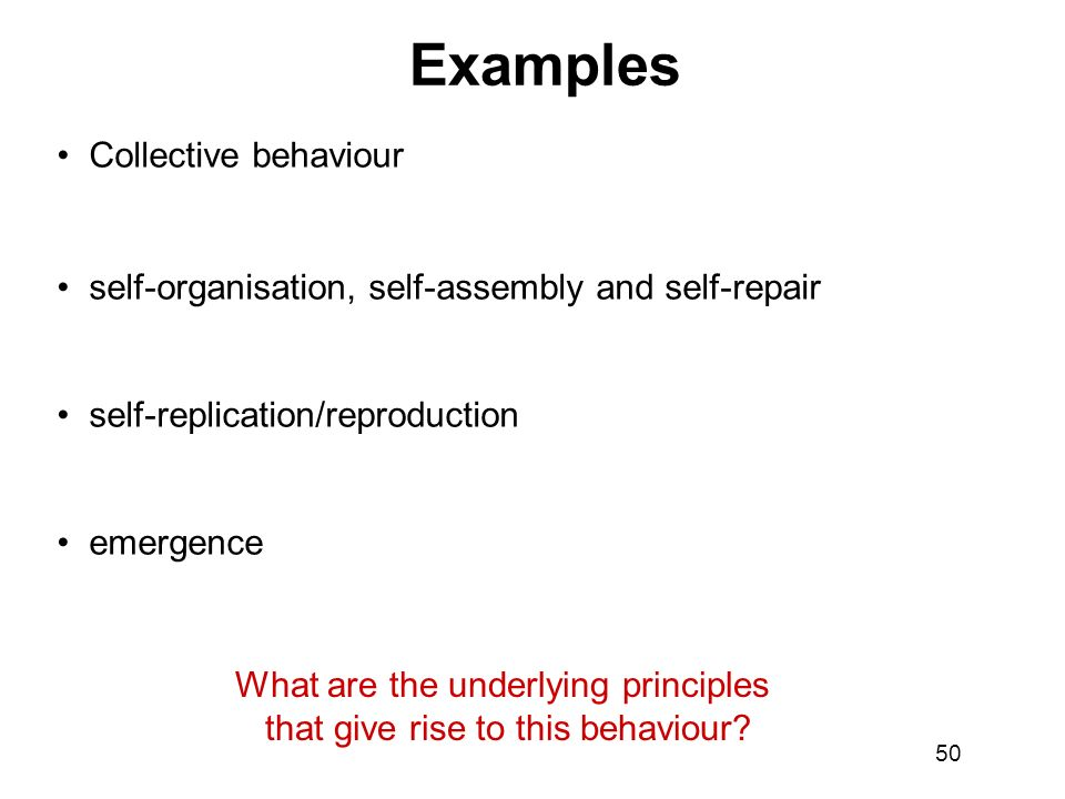 Examples Collective behaviour