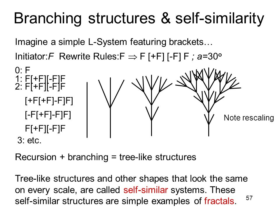Branching structures & self-similarity