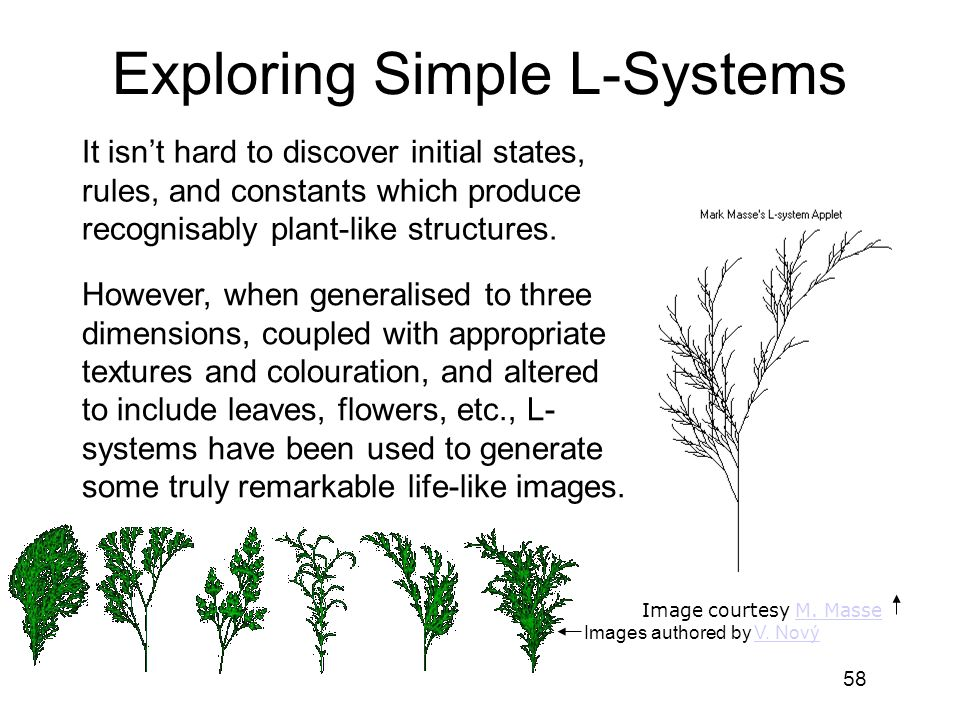 Exploring Simple L-Systems