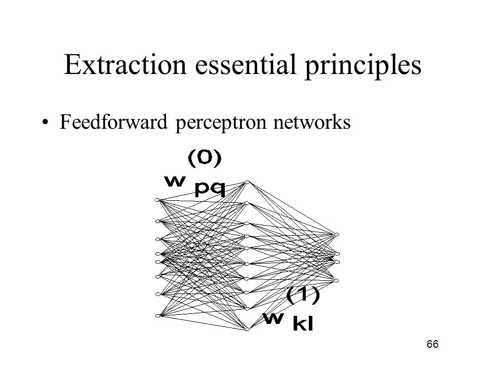 Extraction essential principles