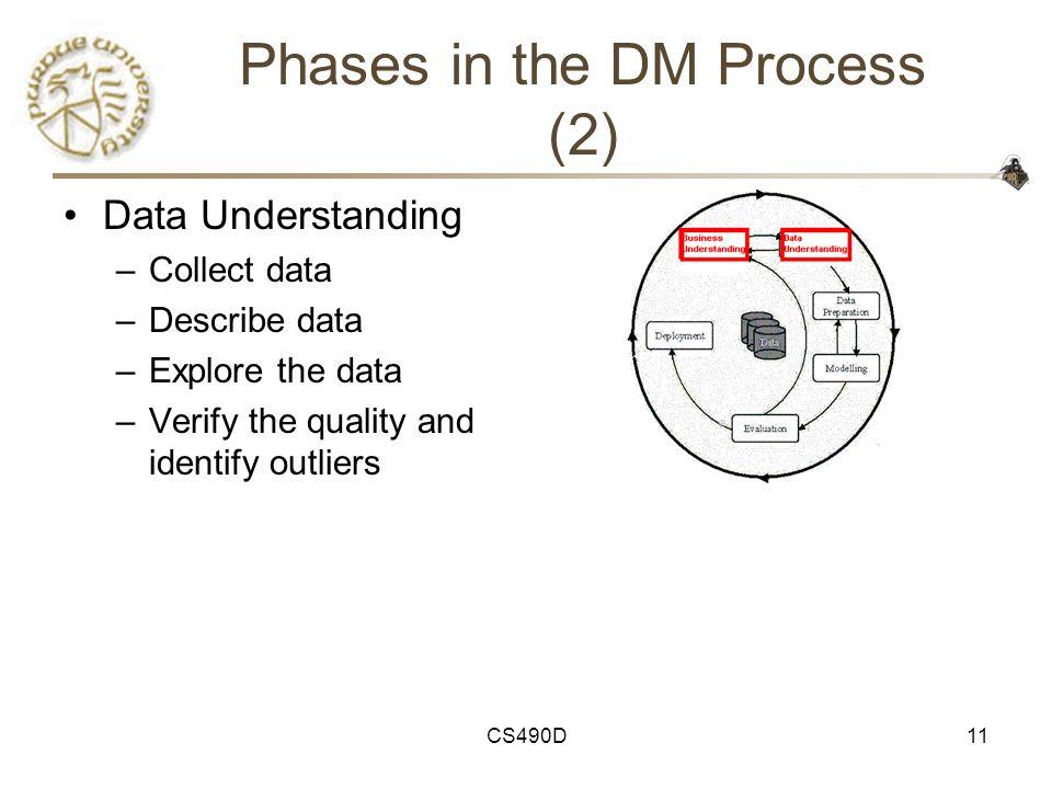 Phases in the DM Process (2)