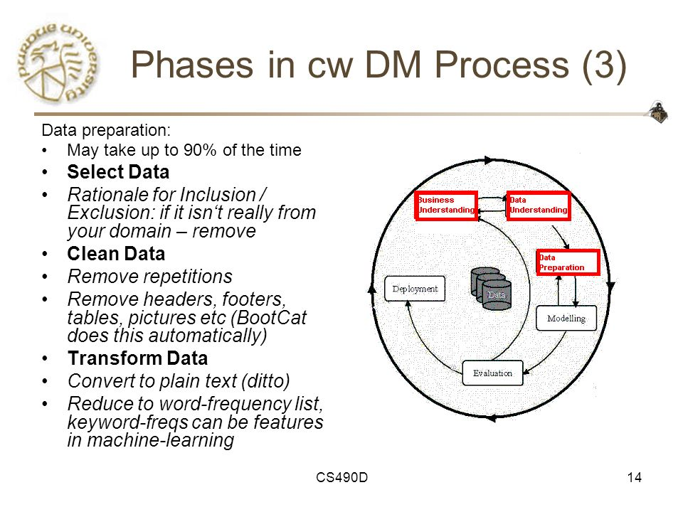 Phases in cw DM Process (3)