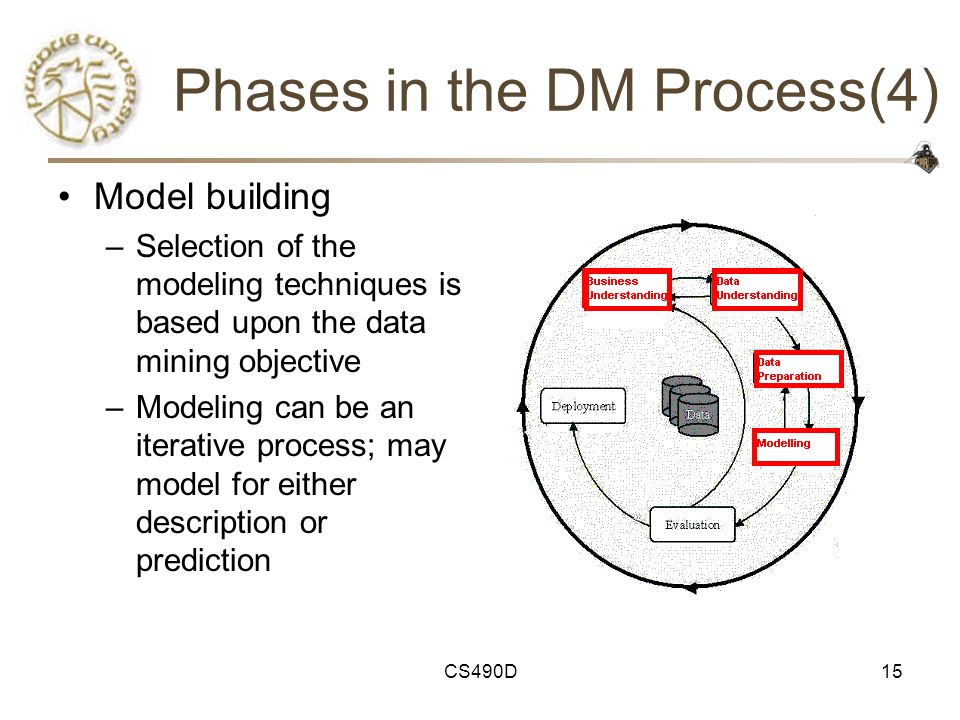 Phases in the DM Process(4)