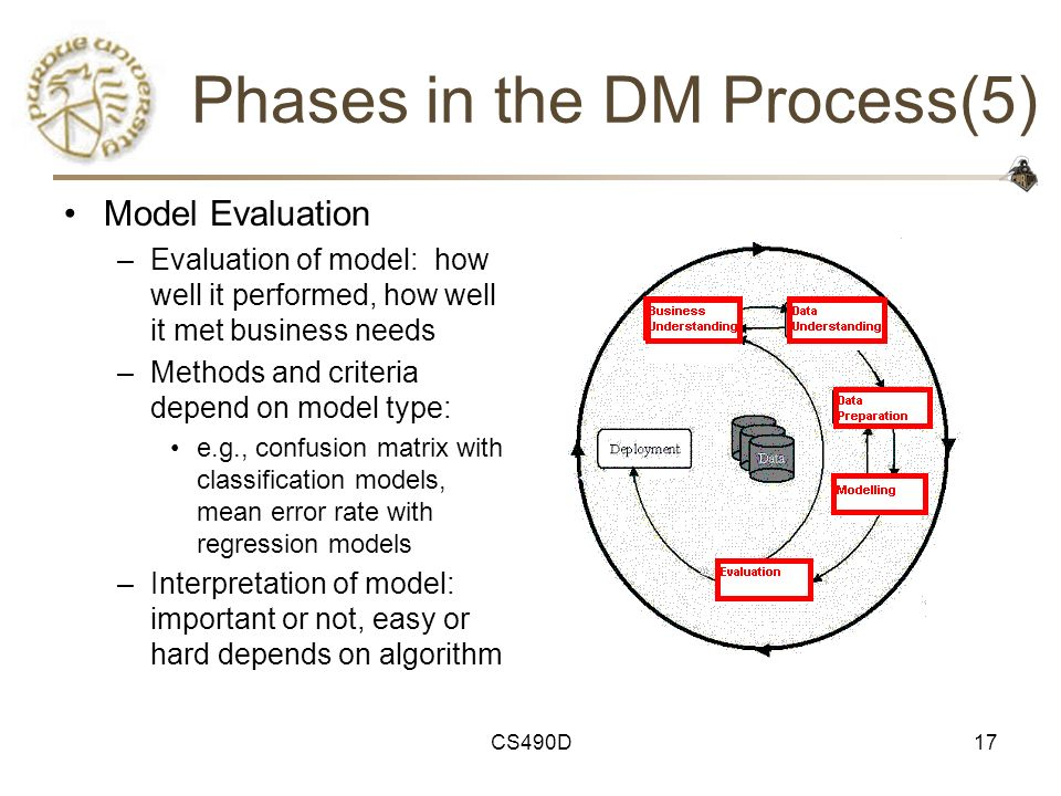 Phases in the DM Process(5)