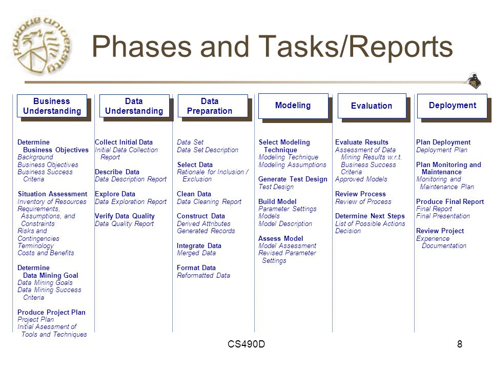 Phases and Tasks/Reports