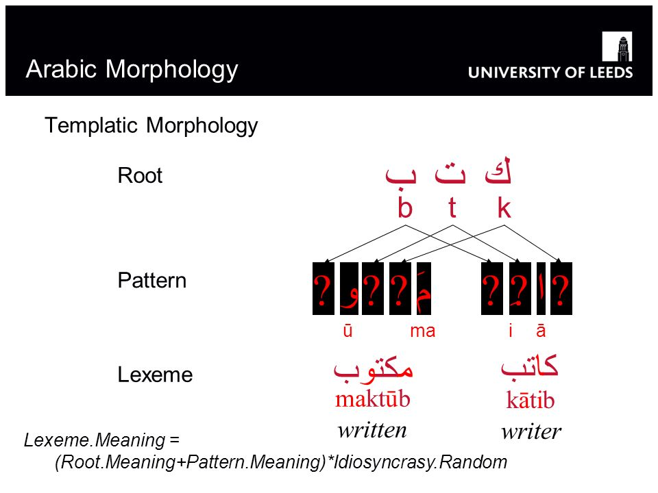 ب ت ك و مَ ِ ا مكتوب كاتب b t k Arabic Morphology