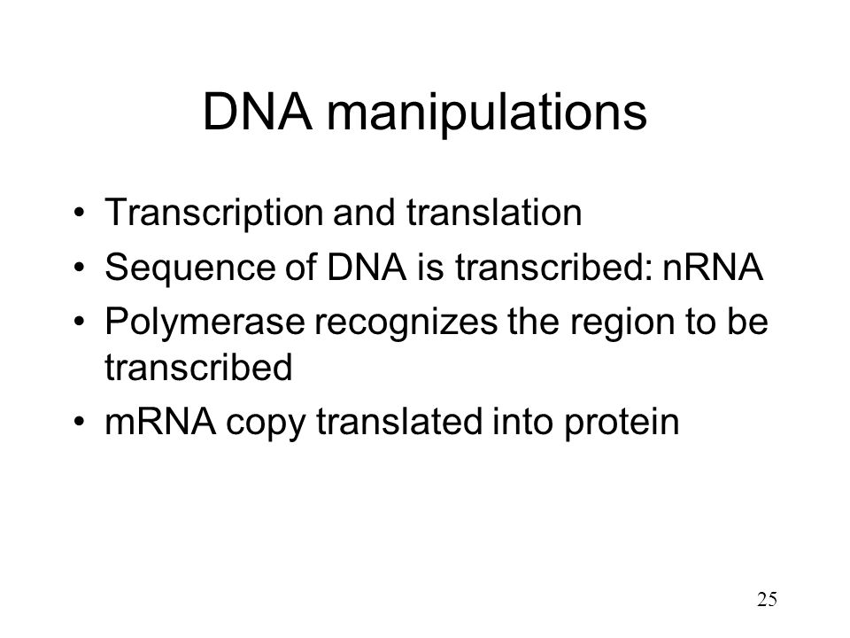 DNA manipulations Transcription and translation