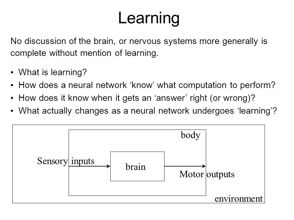 Learning body Sensory inputs brain Motor outputs environment