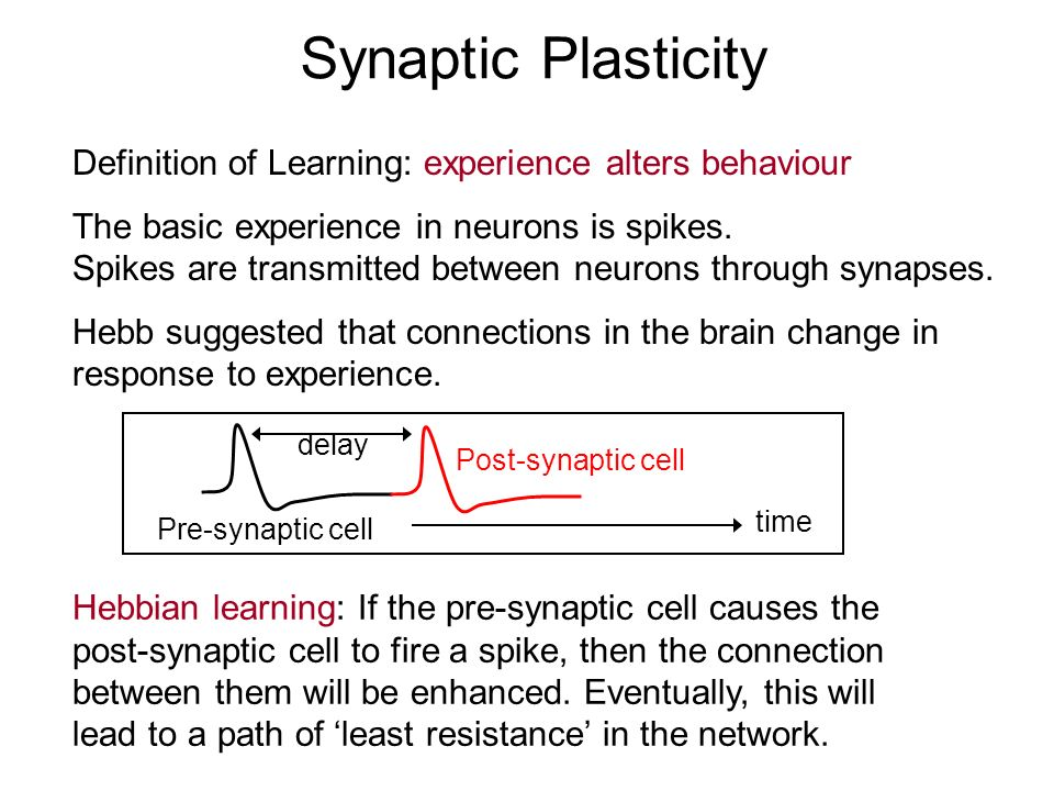 Synaptic Plasticity Definition of Learning: experience alters behaviour. The basic experience in neurons is spikes.