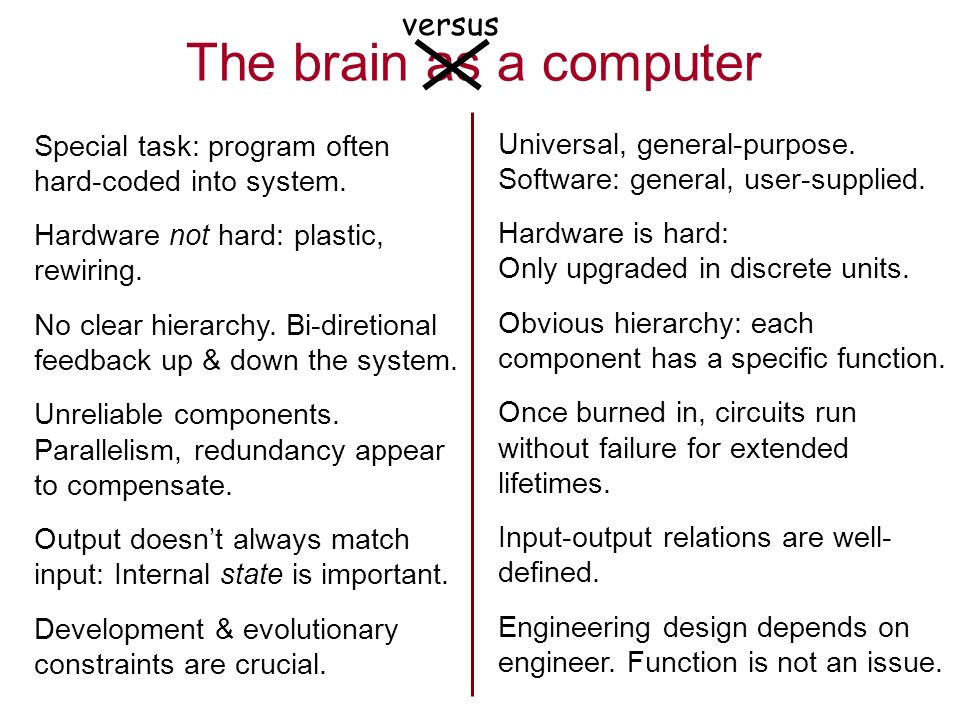 The brain as a computer versus