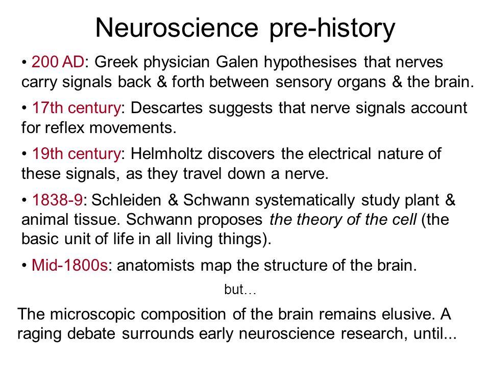 Neuroscience pre-history