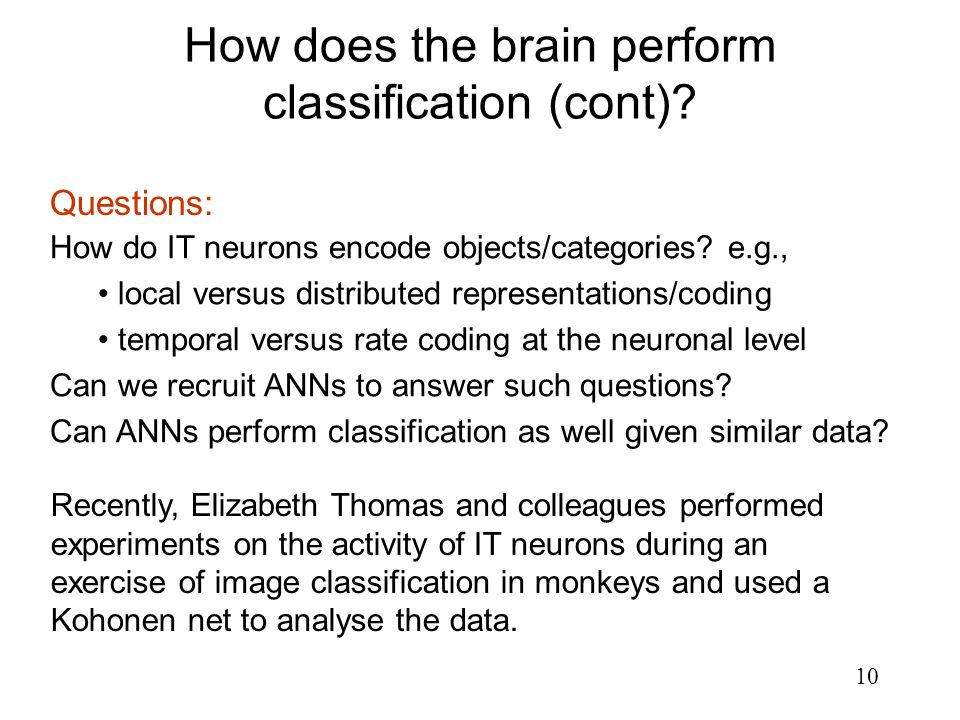 How does the brain perform classification (cont)