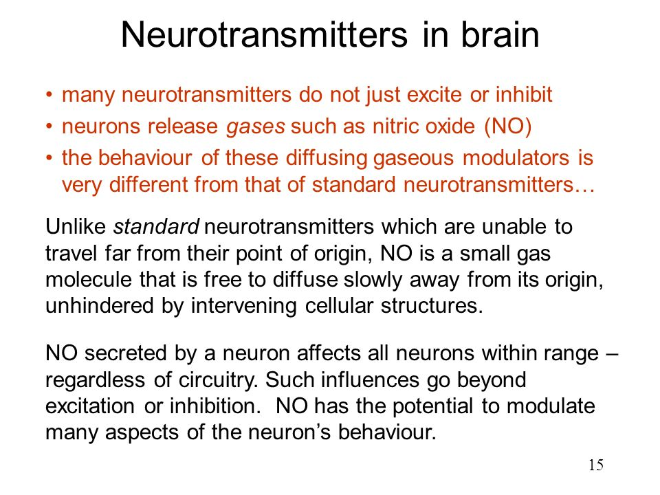 Neurotransmitters in brain