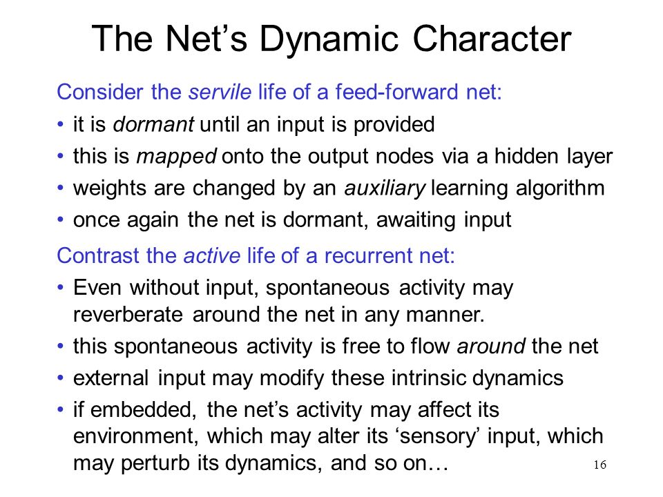 The Net's Dynamic Character