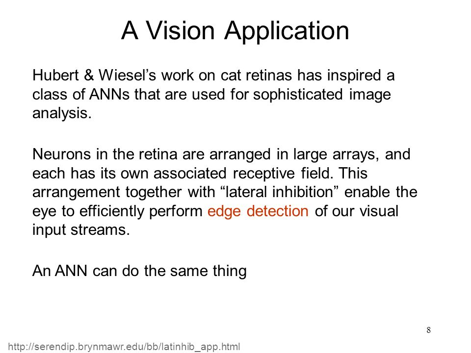 A Vision Application Hubert & Wiesel's work on cat retinas has inspired a class of ANNs that are used for sophisticated image analysis.