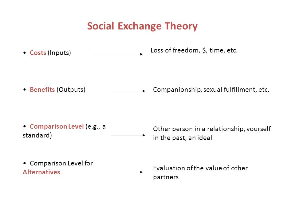 Understanding Social Exchange Theory in Psychology