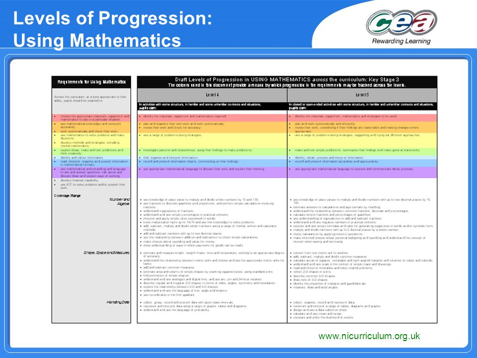 Levels of Progression: Using Mathematics
