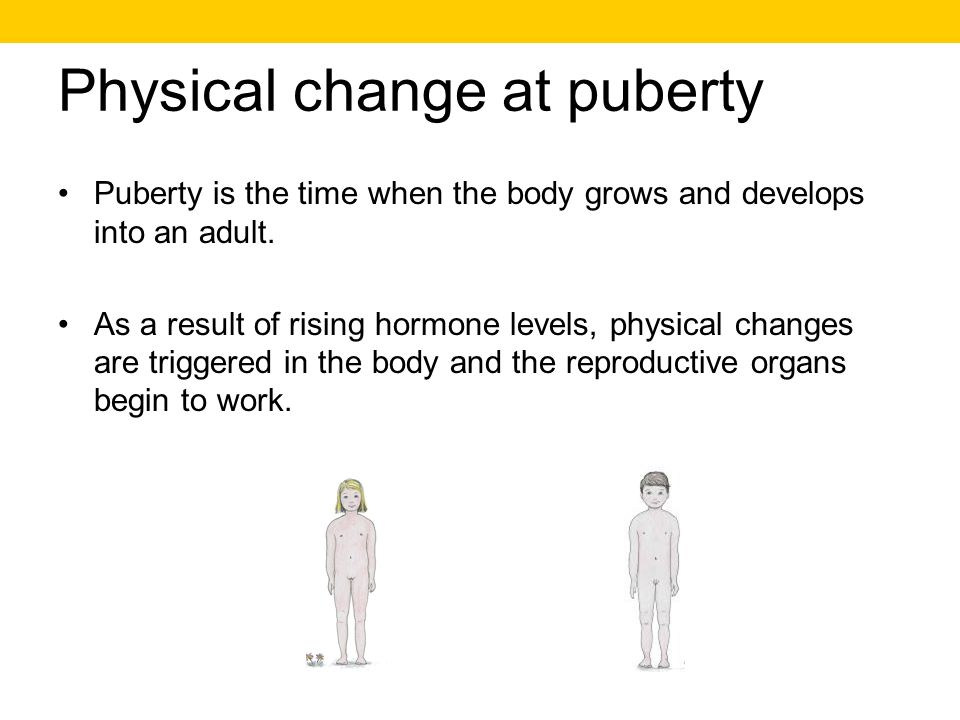 Physical change at puberty