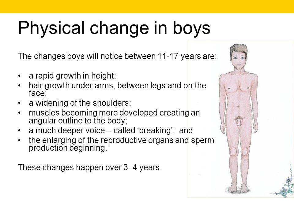 Physical change in boys