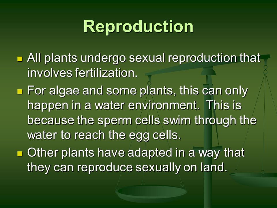 Reproduction All plants undergo sexual reproduction that involves fertilization.