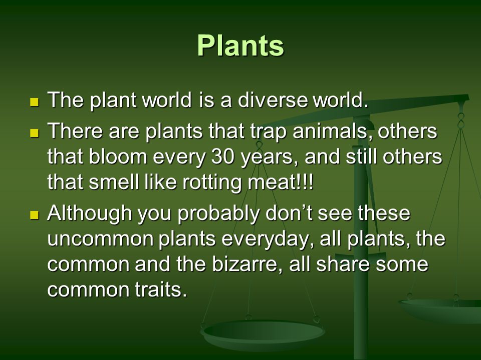 Plants The plant world is a diverse world.