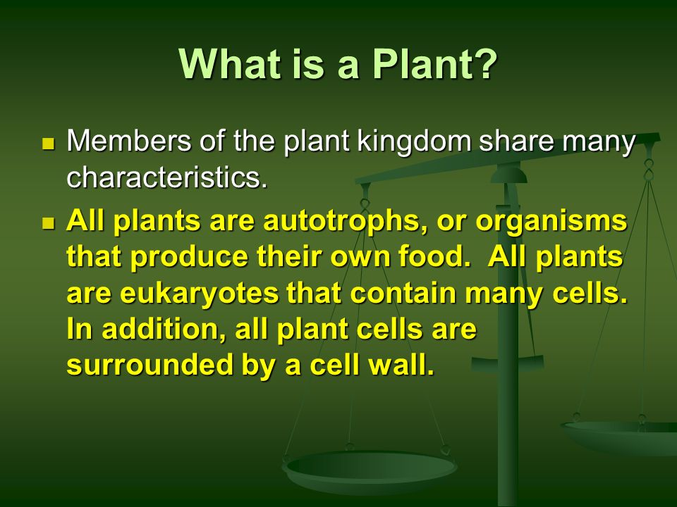 What is a Plant Members of the plant kingdom share many characteristics.