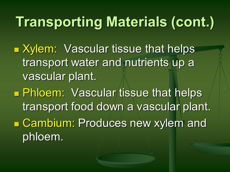 Transporting Materials (cont.)