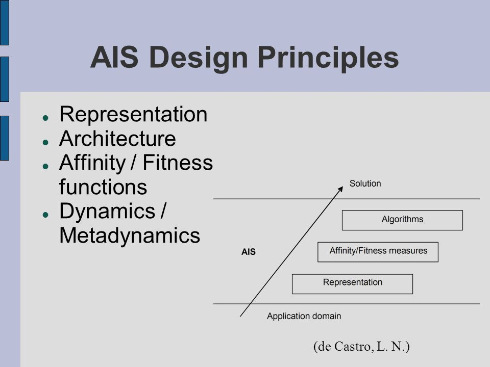 AIS Design Principles Representation Architecture