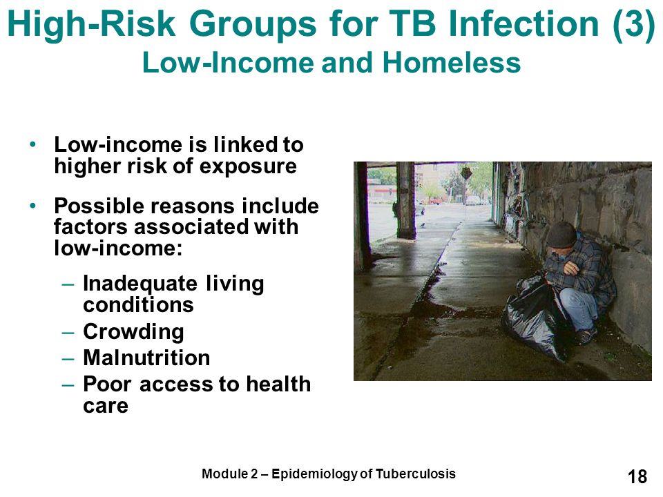 High-Risk Groups for TB Infection (3) Low-Income and Homeless