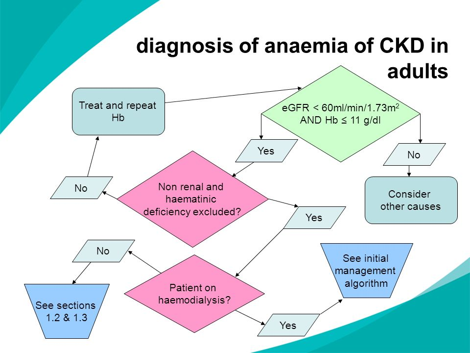 diagnosis of anaemia of CKD in adults